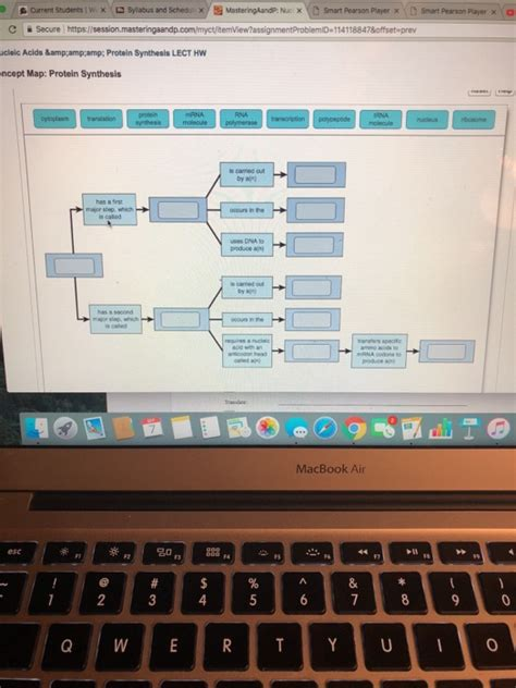 Solved: Complete The Concept Map To Describe The Process O