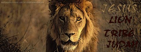 The Lion! | Christian Wallpapers